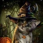 Рисунок профиля (Ночной Кот)