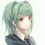 Рисунок профиля (Ringeko)