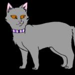 Рисунок профиля (Айва)