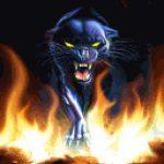 Рисунок профиля (Огненная Пантера)