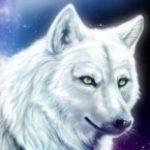 Рисунок профиля (Огненная Звезда)