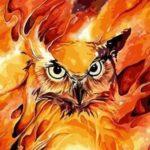 Картинка для Огненная Сова