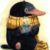 Рисунок профиля (КритиКатя)