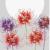Рисунок профиля (Silika)