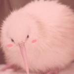 Рисунок профиля (Berry)