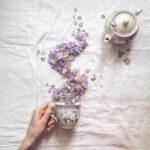 Картинка для ~Green Tea~