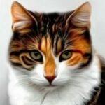 Рисунок профиля (Цветочная звезда)