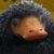Рисунок профиля (niffler_maxima)