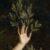 Рисунок профиля (𝑓 𝑜 𝑟 𝑒 𝑠 𝑡)