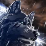 Рисунок профиля (♥ Волчица ♥)