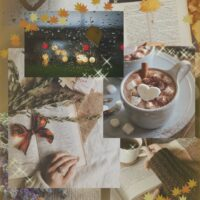 Мой идеальный день - читать книгу под пледом с какао, слушая звуки дождя...