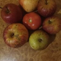 Яблочки окружили помидор.