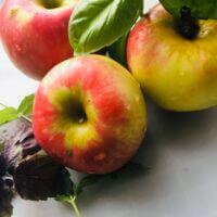 ~ Спелые осенние яблочки с травками ~